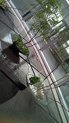 四国電力本社「光の庭」